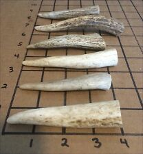 """Six 3""""-5"""" Elk And Deer Antler Tips-Dog Chews, Crafts, Jewelry-Free Shipping!"""
