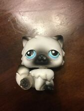 Littlest Pet Shop #60 White With Black Persian Cat With Blue Eyes