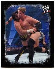 WWE rivali JBL & CM Punk #123 TOPPS 2009 Adesivo (c85)