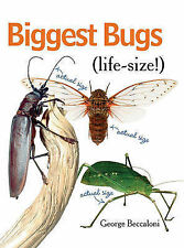 Biggest Bugs Life-Size by George Beccaloni (Hardback, 2010)