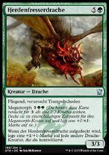 4 Herdchaser Dragon / Herdenfresserdrache (mint, deutsch)