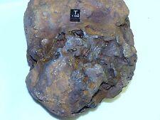 ROUGH METEORITE MUONIONALUSTA 3355 g