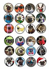 24 icing cupcake cake toppers edible funny cute dressed up pugs in costumes