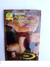 Mycielium dry seed 10g Lactarius deliciosus Saffron Milk Cap Red pine mushrooms