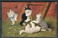 Ansichtskarte Gruppe von Katzen beim Spielen - 00996