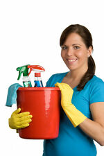 Cleaning Company Detailed Start up Guide / Business Plan & Templates Package