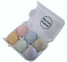 6 PK PASTEL CERAMIC DUMMY CHICKEN NESTING NEST FAKE TRAINING EGG HATCHING CRAFT