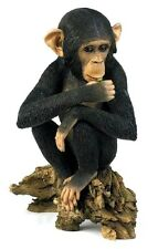 Country Artists Natural World Chimpanzee - Young & Inquisitive Figurine Ca04673