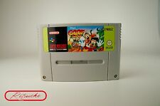 SUPER Nintendo * Disney 's Goof Troop * Modulo SNES