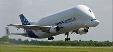 Airbus Beluga Outsize Cargo Freight Airliner Aircraft Desktop Wood Model Large