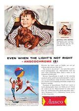 1960 Boy & His Dachshund Puppies photo Ansco Film vintage print ad
