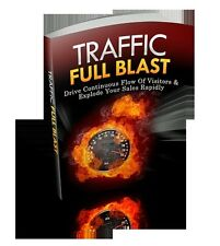 Drive A Continuous Flow Of Visitors To Your Website Full Blast And Fast (CD-ROM)