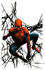 JAE LEE AMAZING SPIDER-MAN SIGNATURE EDITION ART PRINT - SDCC 2014