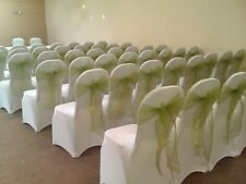 100/50 Ivory Covers Spandex Lycra Chair Cover Wedding off white Party