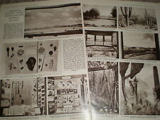 Photo article new botanical gallery South Kensington Museum 1962 ref Z4