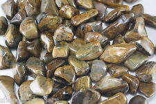 LIONSKIN Tumbled Stone 20-25mm QTY5 Golden Tiger Eye Healing Crystal Psychic