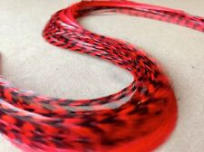 """clip in hair feather extension long custom clip on 8-11"""" Bright colors"""