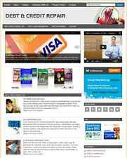DEBT & CREDIT - PROFESSIONAL DESIGNED NICHE WEBSITE WITH INTEGRATED STORE
