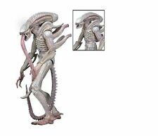 "NECA ALIENS SERIES 9 ALBINO CONCEPT ALIEN WARRIOR 9"" ACTION FIGURE"