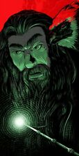 Matthew Johnson Dumbledore Harry Potter S/# LE 40 Movie Poster Book Art Print