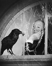 Alfred Hitchcock The Birds Classic 10x8 Photo