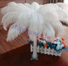 100pcs white ostrich feathers decor wedding&Home,12-14inches