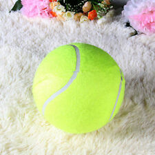 Hot Chic  Pet Dog Puppy Tennis Ball Thrower Chucker Launcher Best Play Toy