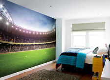 315 x 232cm Wall mural Football Stadium photo wallpaper for childrens room green