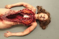 Life Size Autopsy Body - Halloween Prop & Decoration - The Walking Dead Corpse