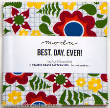Moda FABRIC Charm Pack ~  BEST DAY EVER ~ by Prairie Grass 42 - 5 inch squares
