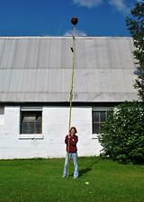 Giant Sunflower - Ultra Tall 'Steve DeRycke' Strain - 5 Premium Seeds