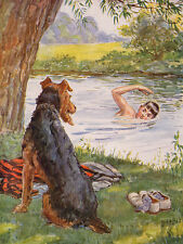 AIREDALE TERRIER CHARMING DOG GREETINGS NOTE CARD DOG WATCHES BOY SWIM