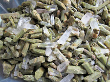 Epidote Included Lemurian Star Seed Crystal 1/4 lb Lot wholesale