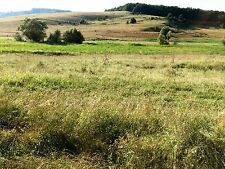 Land for sale in Brasov, Transylvania, Romania (last chance before Brexit!!)