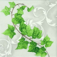 "4x Single Table Paper Napkins for Party, Decoupage, Craft ""Vintage Hedera Ramus"