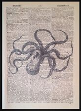 Vintage Octopus Print Picture Dictionary Art Nautical Sea Creature Beach Seaside