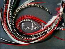 """6 Super Long 11""""-14"""" Feather Hair Extension Pick Your Color Pack DIY Kit"""