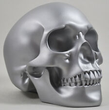 Large Silver Skull Statue Sculpture Human Head Figure Design Clinic NEW 16092