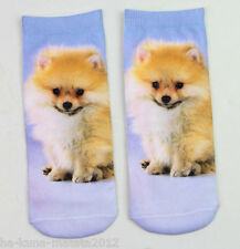 UK Sale: Pomeranian Spitz DOG Pup Trainer SOCKS; UK 3-7, 1pr 3D Digital Photo