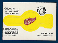 DETROIT RED WINGS 73-74 O-PEE-CHEE 1973-74  NO 13 NRMINT  1813