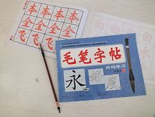 CHINESE 1 BRUSH WRITING PRACTISE COPY PAPER EXERCISE BOOK - INTER TO ADVANCE A11