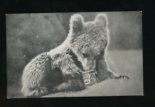 Animals BEAR Cub eating Golden Syrup c1920/30s? advert PPC
