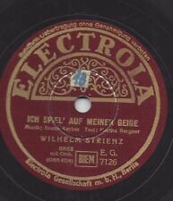 Wilhelm Strienz  : Ich spiel auf meiner Geige + Was will ich noch mehr
