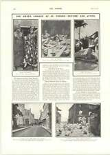 1902 British Relief Party St Pierre Awful Destruction Photographs