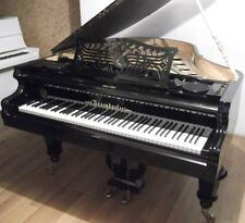 "Bösendorfer Model 170 ""STRAUSS"" Baby Grand - 1890'S"