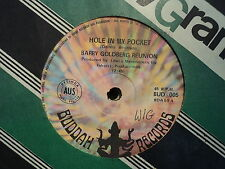 "Barry Goldberg Reunion ""Hole In My Pocket""  Rare Oz 7"""