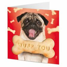 Pug with dog bone message WUFF YOU Valentine Birthday greeting card