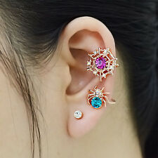Golden Spider web Spider with clear crystals Women Charming Earrings NEW