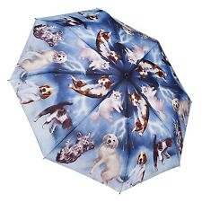 Galleria New Design Raining Cats & Dogs Automatic Open Compact Folding Umbrella