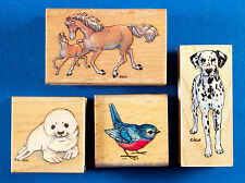 Lot of 4 Animal Rubber Stamps Dalmatian Dog Harp Seal Pup Bird Horses Mare Colt